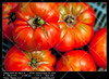 Tomatoes (__Viledevil__) Tags: agriculture box branch bunch cook delicious diet food fresh garden growing healthy ingredient juicy nature organic plant raw red ripe tasty tomatoes vegetable vegetarian vitamin