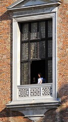 Doges Palace, Venice 5 (Phytophot) Tags: smileonsaturday roomwithaview venice dogespalace window grandeur scale