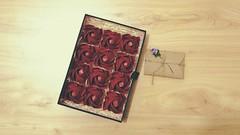 Rose (guangxu233) Tags: rose origami origamiart paperart paper paperfolding art 手作り 折り紙作品 折り紙 折纸 toshikazukawasaki