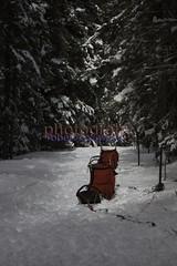 red sleds (zawaski) Tags: canada beauty alberta zawaski©2018 ambientlight noflash canmore naturallight rockymountains calgary love canonefs55250mmf456isstm