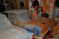 fiat 2100 (riccardo nassisi) Tags: auto abandoned abbandonata rust rusty rottame relitto ruggine ruins scrap scrapyard epave urbex fornace abbandonato
