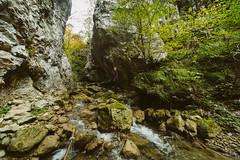 ST851850 (darko djokovic) Tags: serbia westserbia taramountian drina landscape srbija