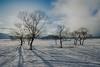 Morning of the snowy field (shinichiro*) Tags: 北塩原村 福島県 日本 jp 20180324ds52587hdr 2018 crazyshin nikond4s afsnikkor2470mmf28ged fuji japan spring march lakehibara fukushima nik hdr 40623890604 candidate