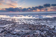Washed ashore! (karindebruin) Tags: thenetherlands nederland noordzee northsea beach strand sunset zonsondergang zuidholland ouddorp goereeoverflakkee shell schelpen