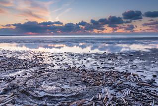 Washed ashore!