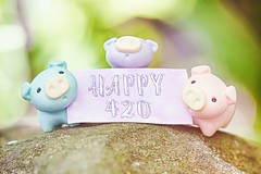 110/365 : Happy 420! (♥GreenTea♥) Tags: pig eraser pigeraser pigs erasers pigerasers bluepig pinkpig purplepig purple blue pink iwako iwakoeraser iwakoerasers イワコー t1i canon canont1i canont1irebel canonrebel eos canoneosrebelt1i ef100mmf28macrousm canonef100mmf28macro hdr googlenikcollection nikcollection colorefexpro viveza hdrefexpro 365 photoaday pictureaday project365 365toyproject oneobject oneobject365daysproject 365the2018edition 3652018 day110365 365day110 day109 project365110 20april18 project36504202018 04202018 420 happy420