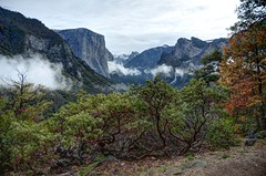 View from Artist Point Trail (Craig Stevens <castevens12>) Tags: nikond7000 tokina1116mmf28 april spring springtime rain rainy rainyseason clouds fog foggy mist trees bushes redwoodtrees cold cool overcast dark daytime day daylight mercedriver yosemitenationalpark yosemitevalley yosemitenps artistpoint wawona tunnelview fullvalley wideangle trail hiking hike