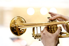 (Massimo De Dominicis) Tags: musiclive jazzlive canonef70200mmf28lisiiusm