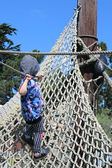 Climbing up (quinn.anya) Tags: sam preschooler rope net adventureplayground