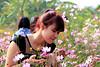 SV- Vườn hoa Bãi Đá Sông Hồng (lactrung2008) Tags: vườn hoa