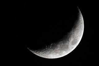 Moon over Bourbon Street  ⎸Sting