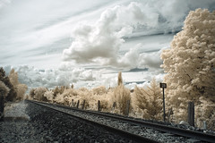 A matter of perspective (Lolo_) Tags: railroad infrared rails voieferré chemindefer ballast mérindol mallemort durance passageàniveau ir 715nm infrarouge 28 clouds trees d70 nuages
