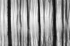 Trapped (DavidFrutos) Tags: davidfrutosegea cieza murcia pantano canondslr 5dmarkii canon70200mm árboles árbol poplar álamo chopo chopera tree bn bw monochrome greyscale landscape paisaje waterscape water agua nature naturaleza reflejo reflection fineart fog foggy niebla