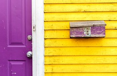 Purple & Yellow (Karen_Chappell) Tags: house building home yellow purple mailbox post mail paint painted wood wooden clapboard downtown stjohns newfoundland nfld jellybeanrow door rowhouse white trim canada atlanticcanada avalonpeninsula eastcoast city urban geometry geometric abstract lines rectangle colourful multicoloured colours colour color bright