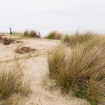 Wassenaar Dunes, Holland thumbnail