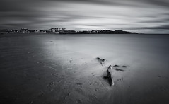 Persistence of time (Robalabob1) Tags: long exposure trearddur bay wales anglesey beach coast rocks sea ocean sand black white water seascape landscape roots tree ynys mon