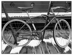 the road warrior (vfrgk) Tags: bicycle road style lifestyle citylife urbanphotography urbanfragment monochrome blackandwhite bnw bw bike lines design