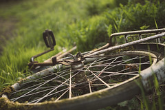 Forgotten vintage bicycle (Ivan Mæland) Tags: vintage old bicycle grass rust forgotten