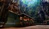 (Sunrider007) Tags: sony a7r3 a7riii 2470 panorama stitched birds bird pigeon malaysia kl kualalumpur hindu temple worship batucaves batu cave landscape travel lighting tropical rain