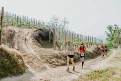 trail_delle_rocche_roero_2018_0265 (Ecomuseo delle Rocche del Roero) Tags: aprile ecomuseodellerocche edizione montà rocche trail uisp trailrunning roero