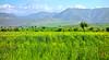 Haut Atlas (KRAMEN) Tags: asni hautatlas marruecos morocco landscape beauty paisaje montaña nieve