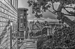 Looking Down Filbert (b&w) (Michael F. Nyiri) Tags: sanfrancisco coittower filbertstreet urban cityscape blackandwhite monochrome telegraphhill california northerncalifornia