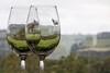 Hugh Hamilton Vineyard, McLaren Vale (adamsgc1) Tags: hughhamilton vineyard mclarenvale south australia wine cellar glasses wineglasses tasting