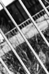 20180406-_DSC6145 (Fabian Tomczyk) Tags: bw blackandwhite black white highcontrast gray shape ground tiles pattern shadows lines negativespace harshshadows harshlight bars edited lightroom adobe sony sonyalpha6000 sonya6000 alpha6000 a6000 alphadicted alphacollective minolta rokkor manualfocus city streetphotography