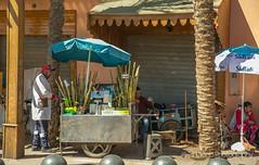"Fresh sugarcane | TrinDiego (TrinDiego) Tags: marrakech morocco trindiego 2018 marrakesh مراكش murrākuš almamlakahalmaghribiyah ""western kingdomالمَغرِبⵍⵎⵖⵔⵉⴱ northafrica africa المملكةالمغربية fresh sugarcane cane sugar kingdomofmorocco ⵜⴰⴳⵍⴷⵉⵜⵏⵍⵎⵖⵔⵉⴱ almaġrib"