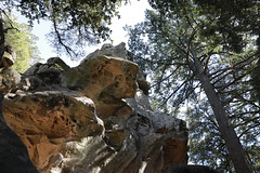 Castle Rock State Park, CA (Richard Kuan) Tags: castlerockstatepark canoneos5dmarkiv ef2470mmf28liiusm