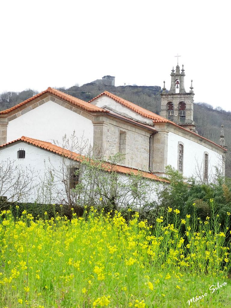 Águas Frias (Chaves) - ... A igreja matriz e os grelhos floridos ...