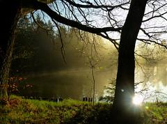 Mystisch (isajachevalier) Tags: landschaft licht sachsen panasonicdmcfz150