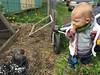 (codfisch) Tags: sigil chickens muneca