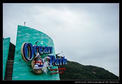 20180110-141341-A7M2 (YKevin1979) Tags: hongkong 香港 黃竹坑 wongchukhang minolta minoltaaf3570mmf4 minoltaaf35704 3570 3570mm f4 sony a7m2 a7ii ilce7m2 oceanpark 海洋公園