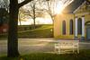 Golden Bench (Jason Lemiere) Tags: bench gold goldenhour denmark copenhagen europe sun sunset old light yellow park travel kastellet