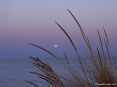 Beach Grass Moonset (JamesEyeViewPhotography) Tags: full moon setting beach grass lake michigan sunrise greatlakes sky clouds spring colors april lakemichigan northernmichigan nature landscape water morning jameseyeviewphotography