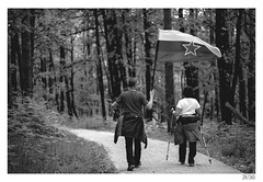 The path of memories and comradeship (Aljaž Anžič Tuna) Tags: the path memories comradeship yugoslavia slovenia flag walk nostalgic nikond800 nikkor nice naturallight nikon nikon105mmf28 105mmf28 f28 forest ljubljana occupied bw blackandwhite black white blackwhite beautiful 365 35mm 365challenge 365project photo365 project365 onephotoaday onceaday