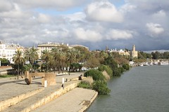Riverside (My photos live here) Tags: seville sevilla andalucia spain city building paseo de christobal colon river