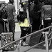 travel fly