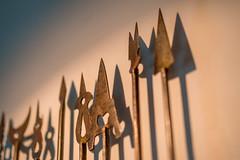 Primitive Tools as Art (Robert Borden) Tags: tools weapons macro details hotelroom art fuji fujifilm fujixt2 fujifilmxt2 50mm mumbai india asia intercontinental stilllife sculpture