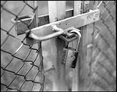 I always keep my bokeh under lock and key... (einarsoyland) Tags: rodinal r09 pentax67 mediumformat fence padlock gate locked blackandwhite monochrome smcp6790mmf28 150 norway bergen sotra fjell ågotnes true2bw lock bokeh bokehlove
