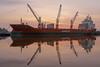 SIX LEGGED MONSTER (maerskman) Tags: sunset ship port labradorhafen bremerhaven d700 trappmann dolfijngracht