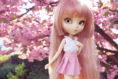 Spring is here (~ Melody and the dolls ~) Tags: pullip doll custom obitsu alice du jardin wig rewigged
