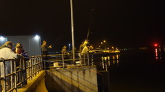 rx10018_0409454 (hr.icio) Tags: herring herringfishingseason night geo:lon=18661282 geo:lat=54407211
