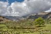 Cumbrian Mountains (Evoljo) Tags: thelakedistrict cumbria mountains sky clouds view grass trees sheep nikon d500