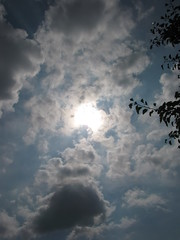 Remember last Summer pictures- SOLAR ECLIPSE (Patchwork Daily Desire) Tags: summer sky sun stars solareclipse2017 eclipse patchworkdailydesire park walking walk