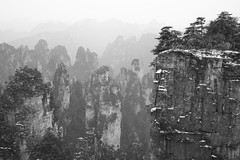 Zhangjiajie National Park (virtualwayfarer) Tags: zhangjiajieshi hunansheng china cn avatar hallelujahmountain zhangjiajie nationalpark nationalforestpark unesco unescoworldheritage worldheritagesite nature wildlife naturephotography dramaticnature landscape dramaticlandscape spires chinese visitchina visithunan hunanprovince incrediblenature lateafternoon cliff cliffs pandora pandoramountains mountains karstformation winter snow snowy naturalwonder republicofchina mistymountains mist 張家界 scenery pillar blackandwhite blackandwhitephotography alexberger virtualwayfarer sonya7rii sonyalpha