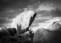 Sleeping Horse-Lady (dwblakey) Tags: california rockpile blackandwhite monochrome easternsierra bishop landscape outdoors clouds monocounty evening sky rocks unitedstates us