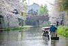 近江八幡・八幡堀12・Ohmi Hachiman (anglo10) Tags: 近江八幡市 滋賀県 japan cherry 桜 橋 bridge