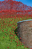Wave by the wall (Neyol) Tags: poppy wave fort nelson portsmouth